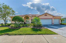 Photo of 2643 Saddlewood Lane, PALM HARBOR, FL 34685 (MLS # U8001445)