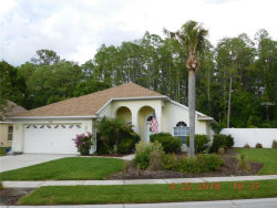 Photo of 4829 Ridgemoor Circle, PALM HARBOR, FL 34685 (MLS # U8001669)