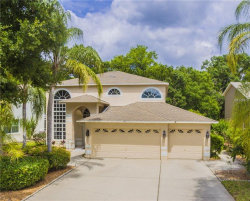 Photo of 2055 Otter Way, PALM HARBOR, FL 34685 (MLS # U8001672)