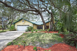 Photo of 1120 Knollwood Drive, SAFETY HARBOR, FL 34695 (MLS # U8003973)