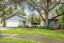 Photo of 15 Summit Lane, SAFETY HARBOR, FL 34695 (MLS # U8005887)