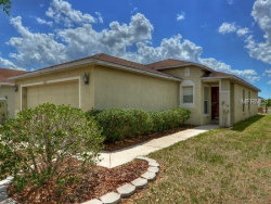 Photo of 11045 N Golden Silence Drive N, RIVERVIEW, FL 33569 (MLS # U8007171)