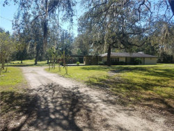 Photo of 33300 Rowntree Drive, DADE CITY, FL 33523 (MLS # U8007593)