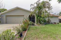 Photo of 107 Timber Circle, SAFETY HARBOR, FL 34695 (MLS # U8007616)