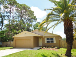 Photo of 5811 62nd Street N, ST PETERSBURG, FL 33709 (MLS # U8009403)