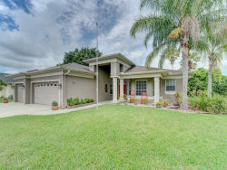 Photo of 2242 Edelweiss Loop, TRINITY, FL 34655 (MLS # U8009610)