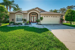 Photo of 1460 Watermill Circle, TARPON SPRINGS, FL 34689 (MLS # U8010652)