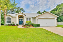 Photo of 1705 Wilmar Avenue, TARPON SPRINGS, FL 34689 (MLS # U8010827)