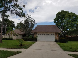 Photo of 1256 Ridgegrove Drive S, PALM HARBOR, FL 34683 (MLS # U8013992)
