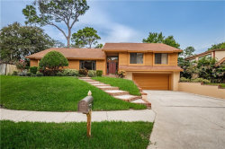 Photo of 3046 Enisglen Drive, PALM HARBOR, FL 34683 (MLS # U8014346)