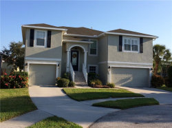 Photo of 1003 Spoontail Court, TARPON SPRINGS, FL 34689 (MLS # U8014513)