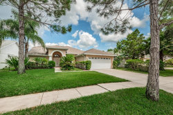 Photo of 1269 Salt Lake Drive, TARPON SPRINGS, FL 34689 (MLS # U8017936)