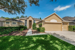 Photo of 27127 Fordham Drive, WESLEY CHAPEL, FL 33544 (MLS # U8018249)