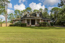 Photo of 27043 Green Willow Run, WESLEY CHAPEL, FL 33544 (MLS # U8018966)