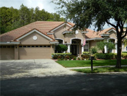 Photo of 2960 Hawks Landing Boulevard, PALM HARBOR, FL 34685 (MLS # U8020392)