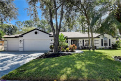 Photo of 4740 Brayton Terrace S, PALM HARBOR, FL 34685 (MLS # U8020871)