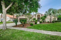 Photo of 3985 Belmoor Drive, PALM HARBOR, FL 34685 (MLS # U8020884)