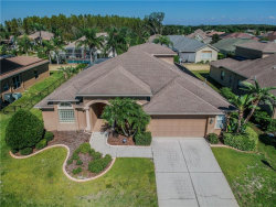 Photo of 2132 Flameflower Court, TRINITY, FL 34655 (MLS # U8021182)