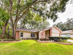 Photo of 36 Crane Drive, SAFETY HARBOR, FL 34695 (MLS # U8025379)