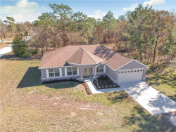 Photo of 12144 Finch Road, WEEKI WACHEE, FL 34614 (MLS # U8027586)
