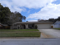 Photo of 2547 Splitwood Way, CLEARWATER, FL 33761 (MLS # U8027959)