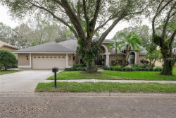 Photo of 4702 Brayton Terrace S, PALM HARBOR, FL 34685 (MLS # U8030579)