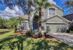 Photo of 13206 Royal George Avenue, ODESSA, FL 33556 (MLS # U8034328)