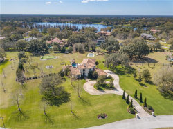 Photo of 7773 Still Lakes Drive, ODESSA, FL 33556 (MLS # U8034733)