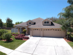 Photo of 3003 Downan Point Drive, LAND O LAKES, FL 34638 (MLS # U8038951)