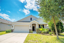 Photo of 30546 Casewell Place, WESLEY CHAPEL, FL 33545 (MLS # U8042765)