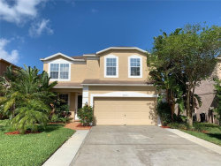 Photo of 3053 Savannah Oaks Circle, TARPON SPRINGS, FL 34688 (MLS # U8043094)