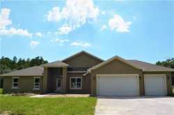 Photo of 16220 Lake Armistead Way, ODESSA, FL 33556 (MLS # U8045861)