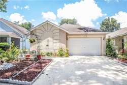 Photo of 15022 Deer Meadow Drive, LUTZ, FL 33559 (MLS # U8046130)