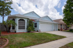 Photo of 394 Wood Chuck Ave, TARPON SPRINGS, FL 34689 (MLS # U8046219)
