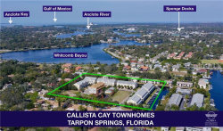 Photo of 807 Callista Cay Loop, TARPON SPRINGS, FL 34689 (MLS # U8047704)