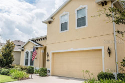 Photo of 11239 Spring Point Circle, RIVERVIEW, FL 33579 (MLS # U8049496)