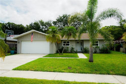Photo of 2341 Moore Haven Drive E, CLEARWATER, FL 33763 (MLS # U8049524)