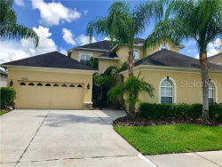 Photo of 3128 Stonegate Falls Drive, LAND O LAKES, FL 34638 (MLS # U8049870)