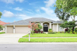 Photo of 774 Belted Kingfisher Drive N, PALM HARBOR, FL 34683 (MLS # U8052593)