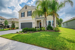 Photo of 14628 Trails Edge Boulevard, ODESSA, FL 33556 (MLS # U8052894)