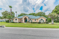 Photo of 13420 Newcastle Avenue, SPRING HILL, FL 34609 (MLS # U8055514)
