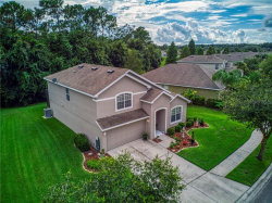 Photo of 12055 Colony Lakes Boulevard, NEW PORT RICHEY, FL 34654 (MLS # U8055820)