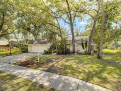 Photo of 1733 Tall Pine Circle, SAFETY HARBOR, FL 34695 (MLS # U8059532)