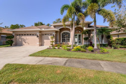 Photo of 919 Wyngate Court, SAFETY HARBOR, FL 34695 (MLS # U8060228)