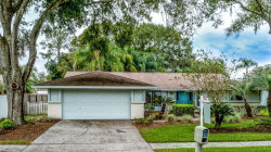 Photo of 5804 Lady Bug Court, TAMPA, FL 33625 (MLS # U8064594)