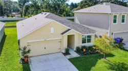 Photo of 9903 Warm Stone Street, THONOTOSASSA, FL 33592 (MLS # U8066220)