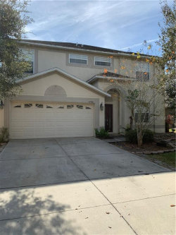 Photo of 13906 Caden Glen Drive, HUDSON, FL 34669 (MLS # U8068000)