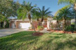 Photo of 5071 Cross Pointe Drive, OLDSMAR, FL 34677 (MLS # U8069959)