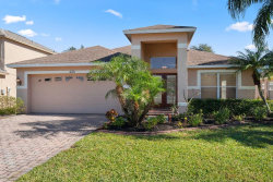 Photo of 220 Bay Arbor Boulevard, OLDSMAR, FL 34677 (MLS # U8070689)
