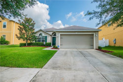 Photo of 13226 Waterford Castle Drive, DADE CITY, FL 33525 (MLS # U8075644)